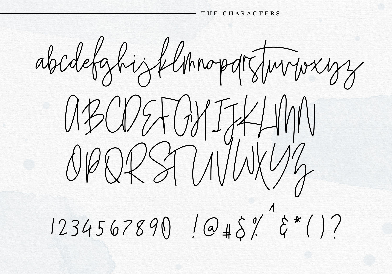 Saturday - Signature Script Font example image 9