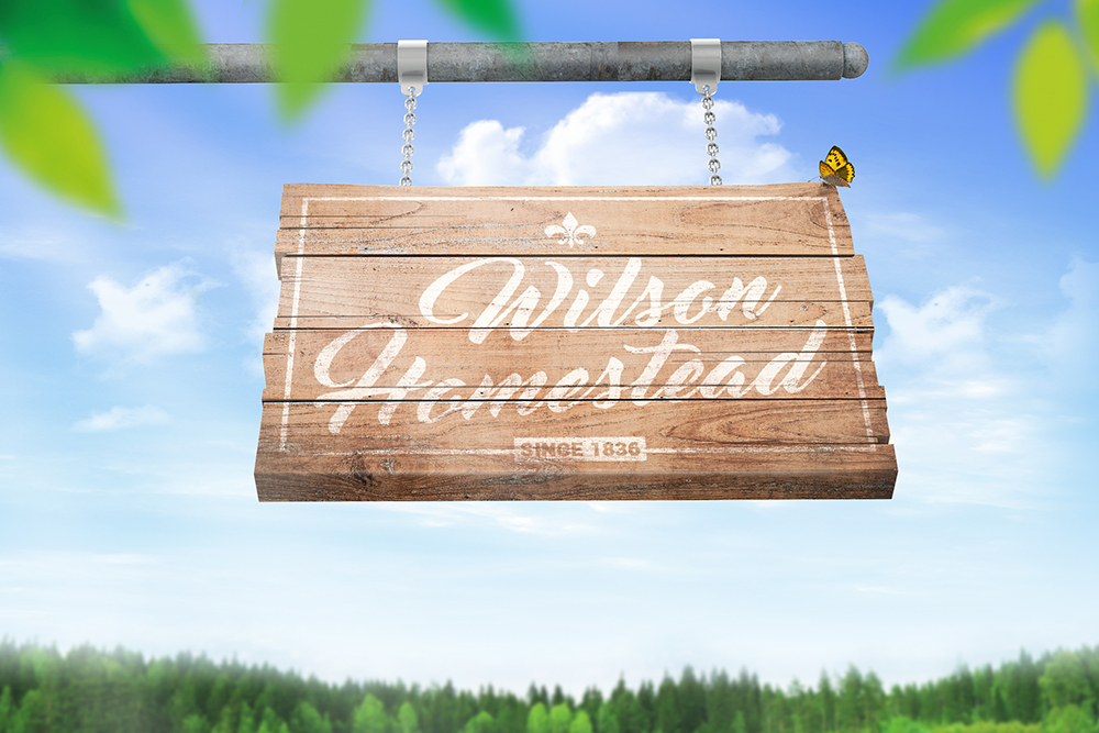 Hanging Wooden Sign Mockup example image 6