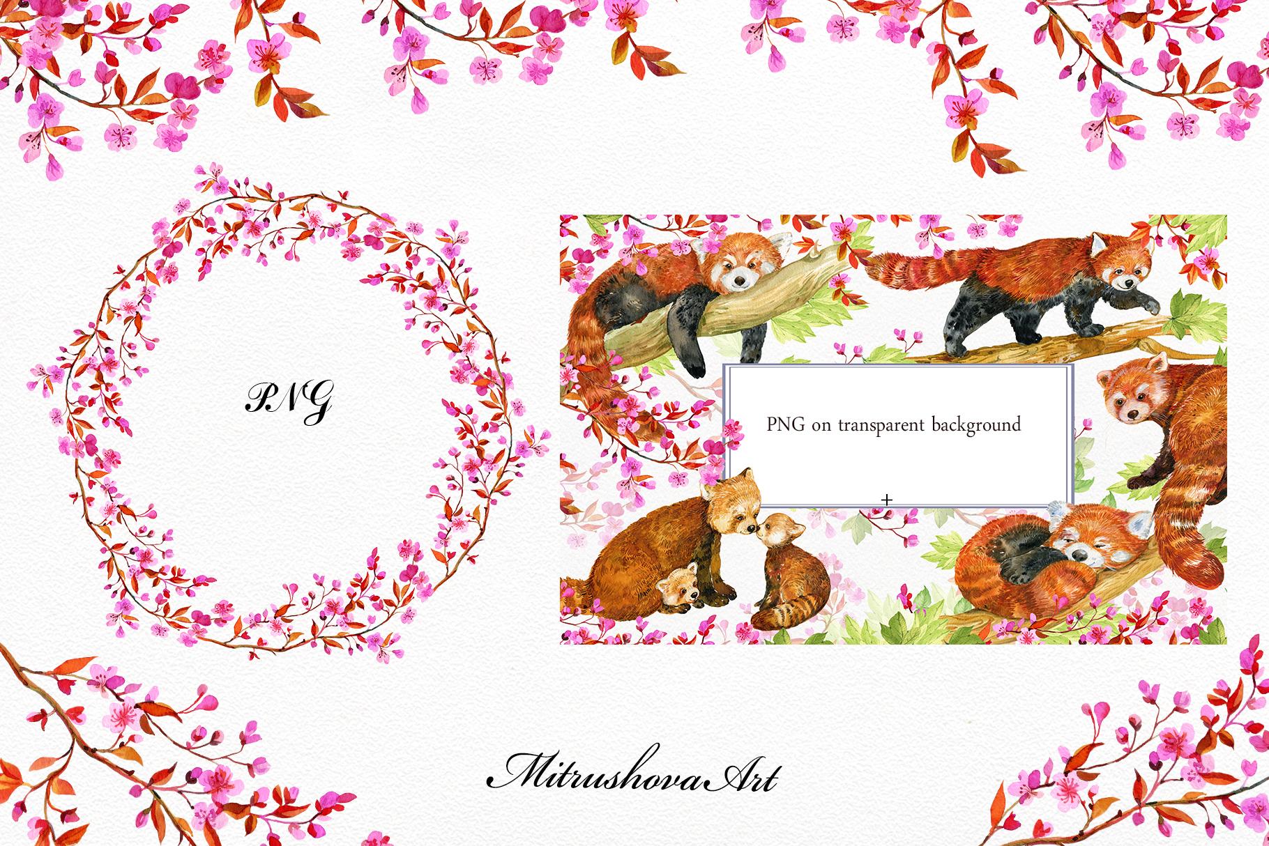 Red Panda ,watercolor illustrations example image 6