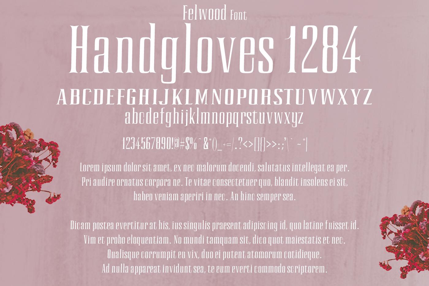 Felwood Font example image 2