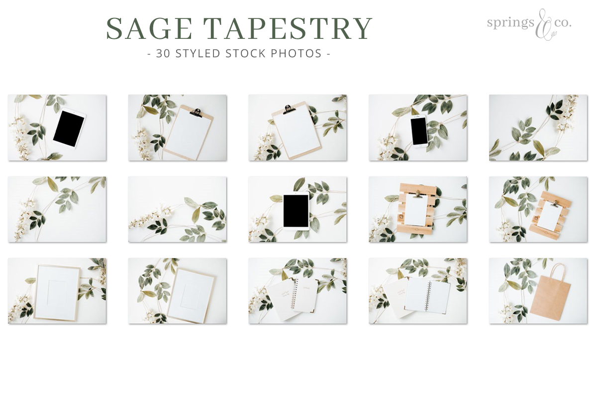 Sage Tapestry Stock Photo Bundle example image 3
