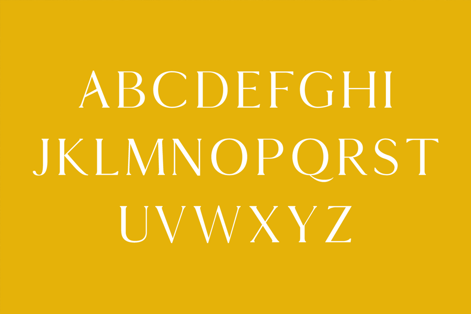 Thomas Mag Serif 9 Fonts Family Pack example image 2