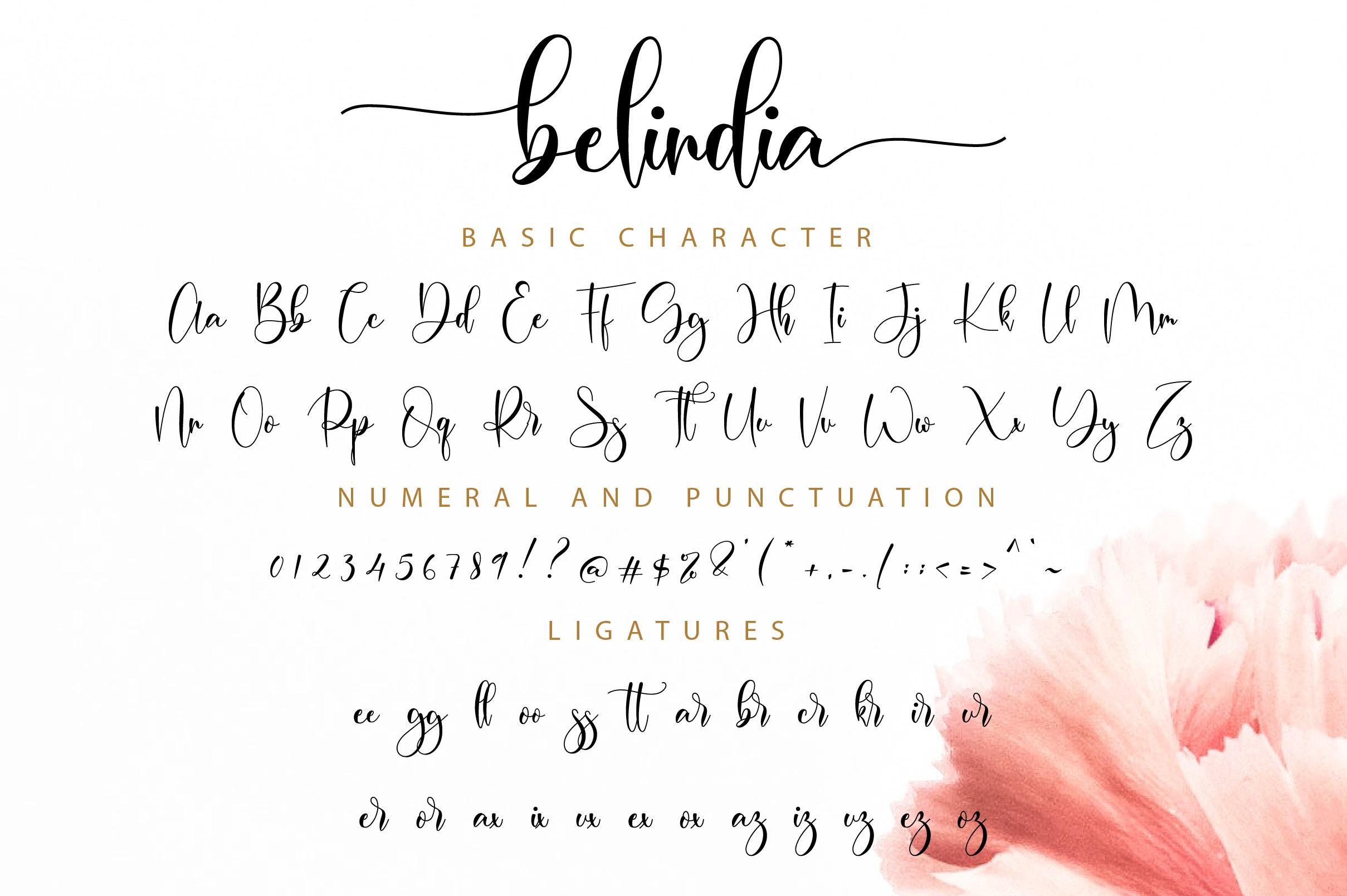 Belindia Script example image 11