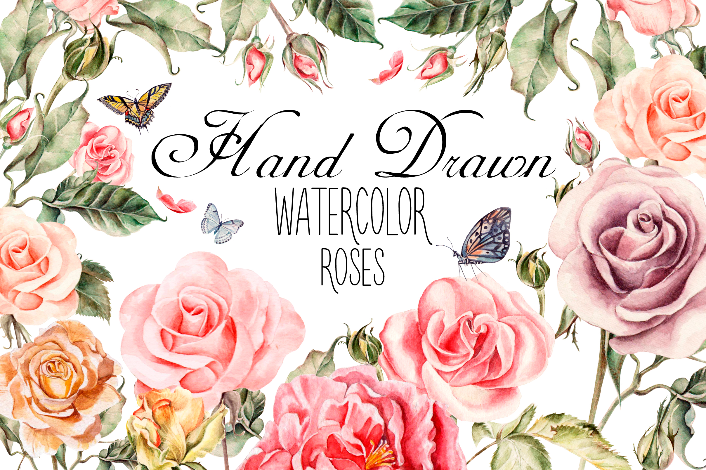 Hand drawn watercolor roses example image 1