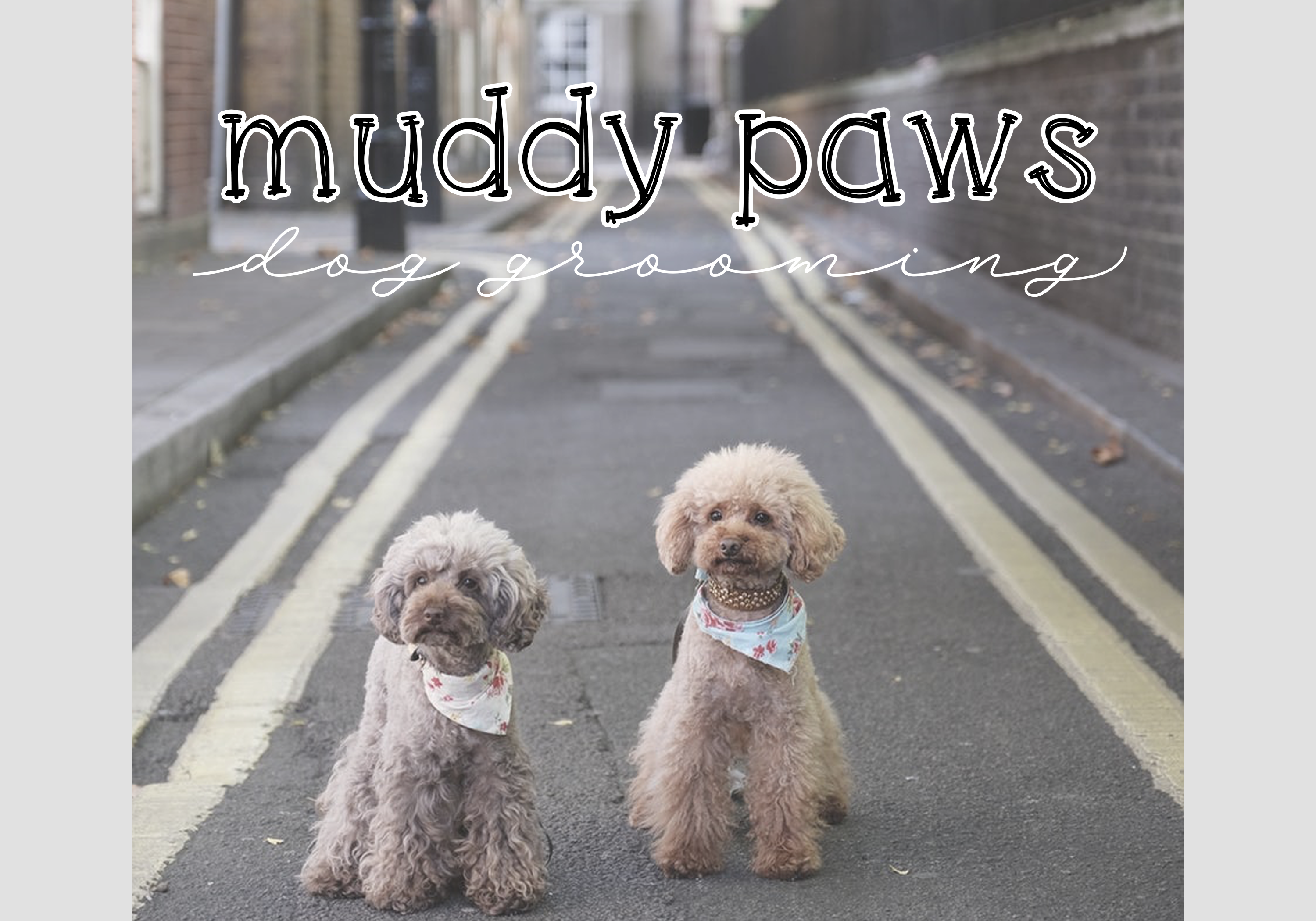 Cats and Dogs - A Cute Handwritten Font example image 4