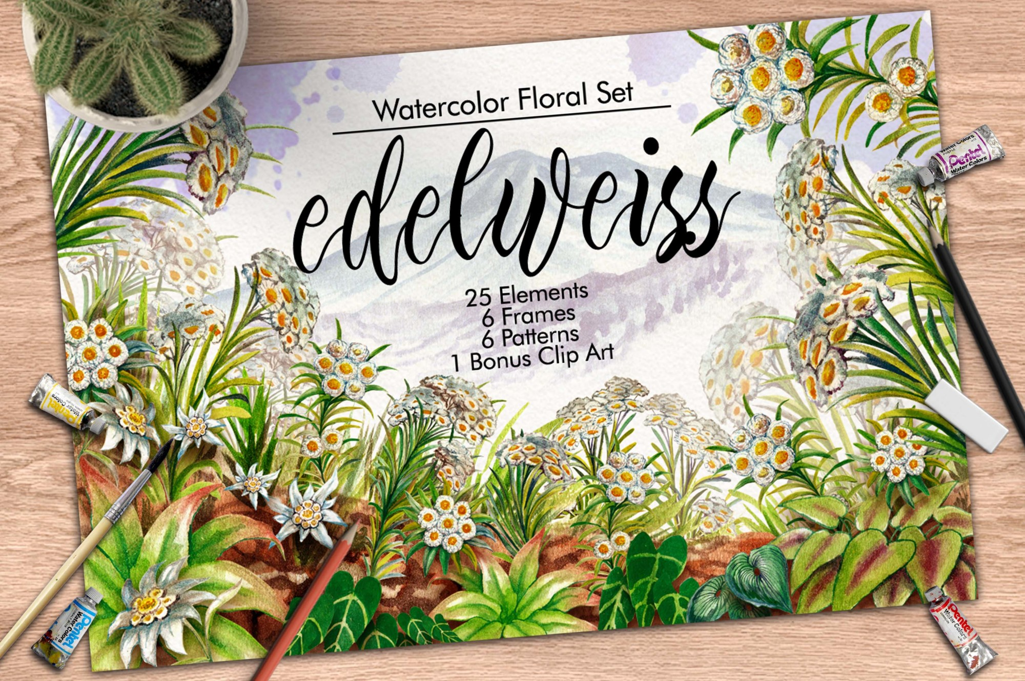 Watercolor Edelweis example image 1