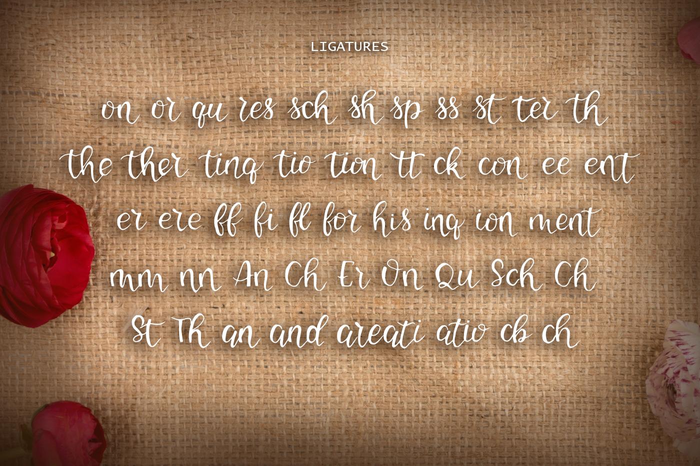 Caston Bean Font example image 3