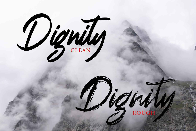 Dignity Brush Typeface example image 2