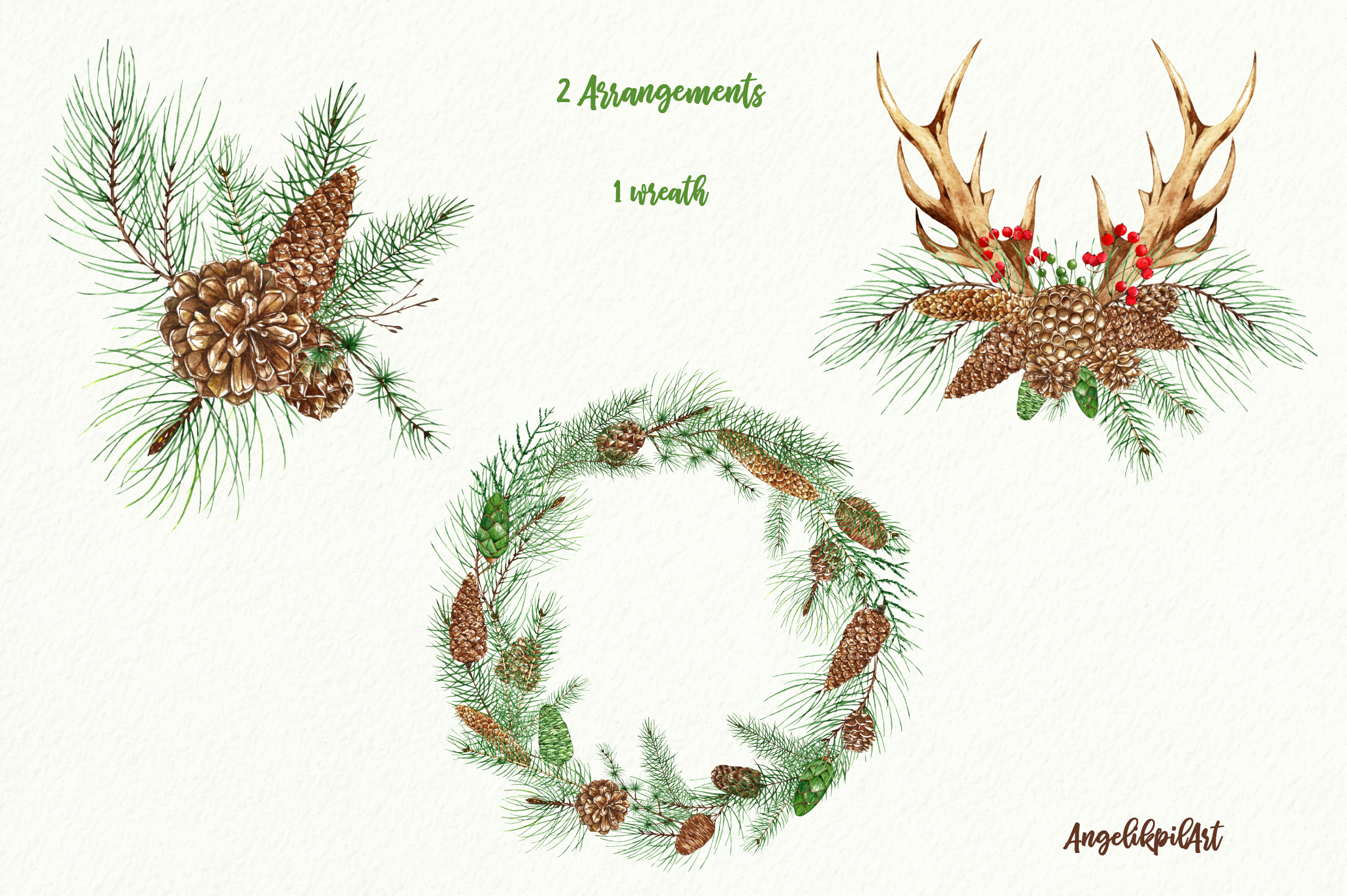 Conifers. Cones&Twigs watercolor example image 7