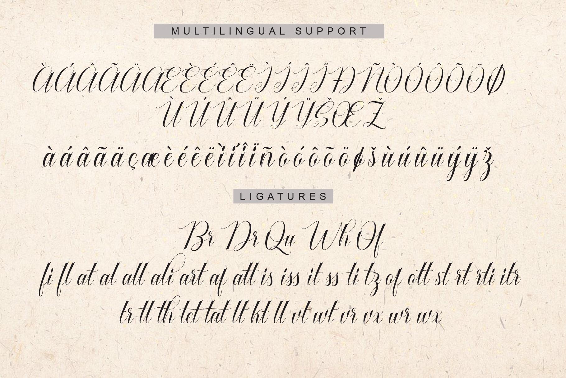 Cataline Script example image 12