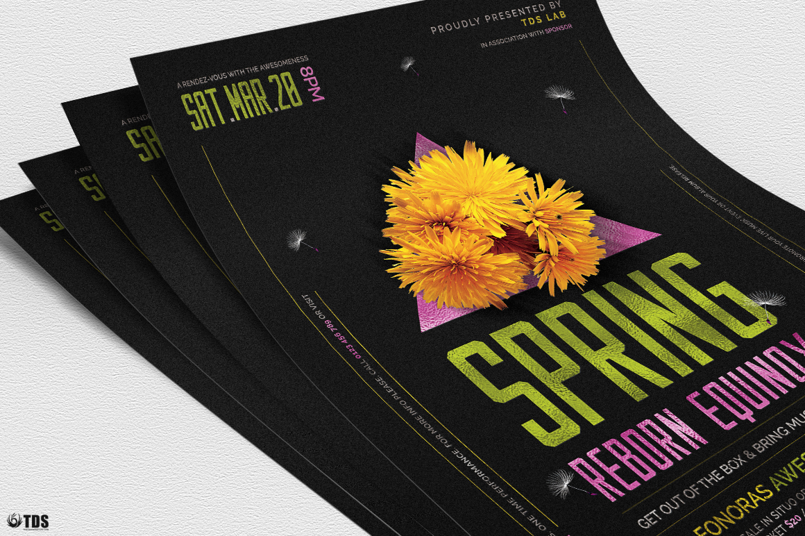 Spring Equinox Flyer Template V6 example image 5