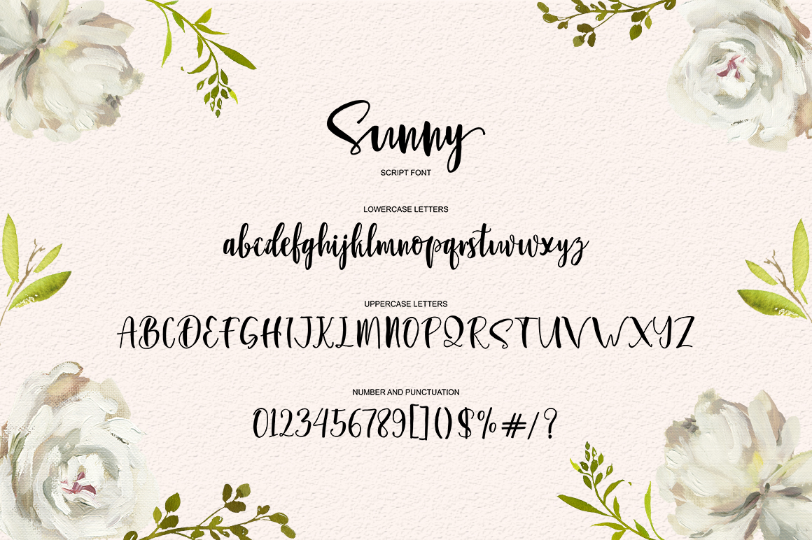 Sunny Script example image 9