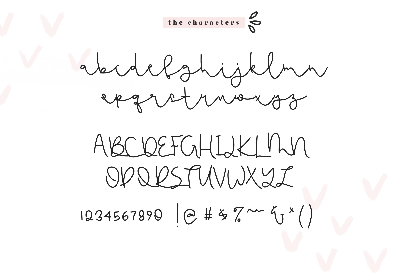 Flamingo - Handwritten Script Font example image 7