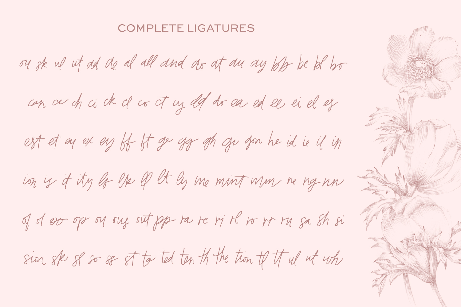 The Signature Font Bundle by Beck McCormick example image 10