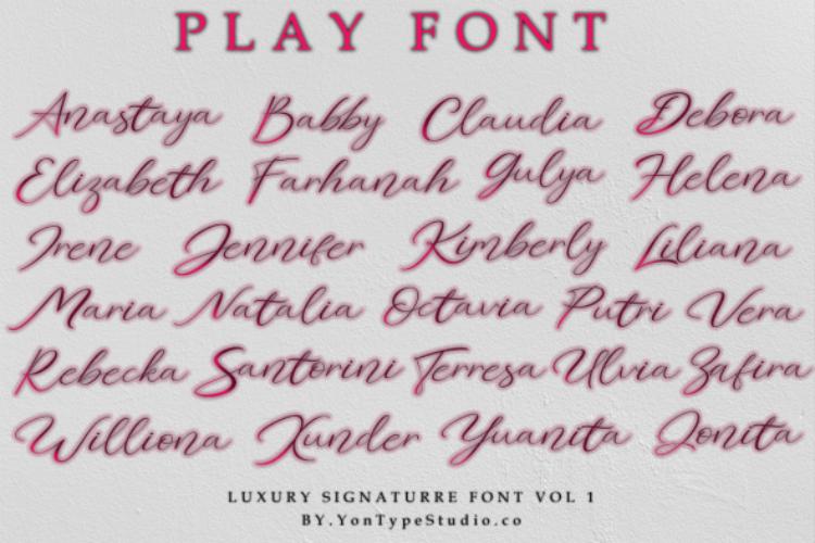 Elizabeth Luxury Signature Font example image 10