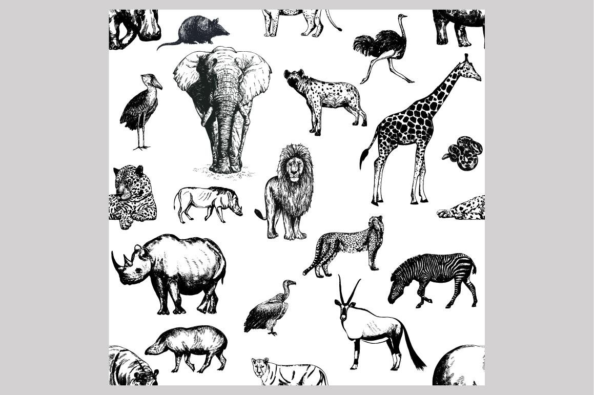 Wild Animals 3 example image 3
