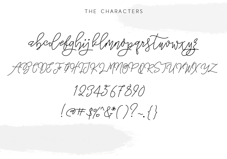 Lakehouse - Fancy Script Font example image 5