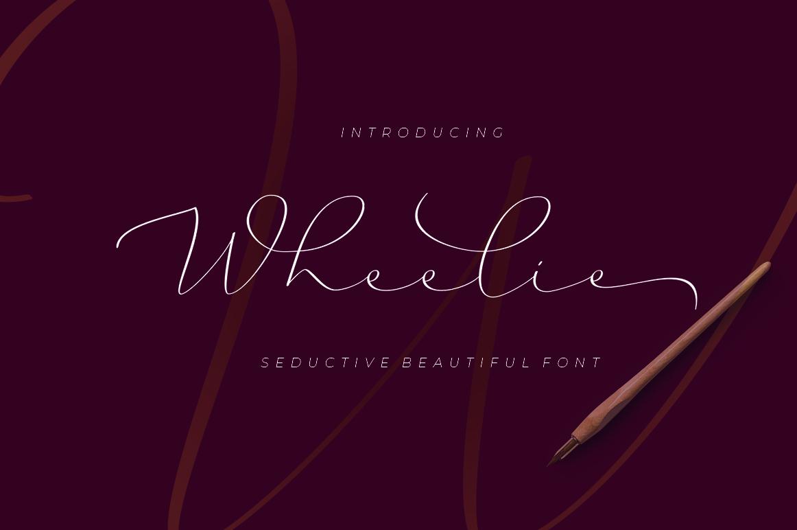The Script Font Bundle example image 20