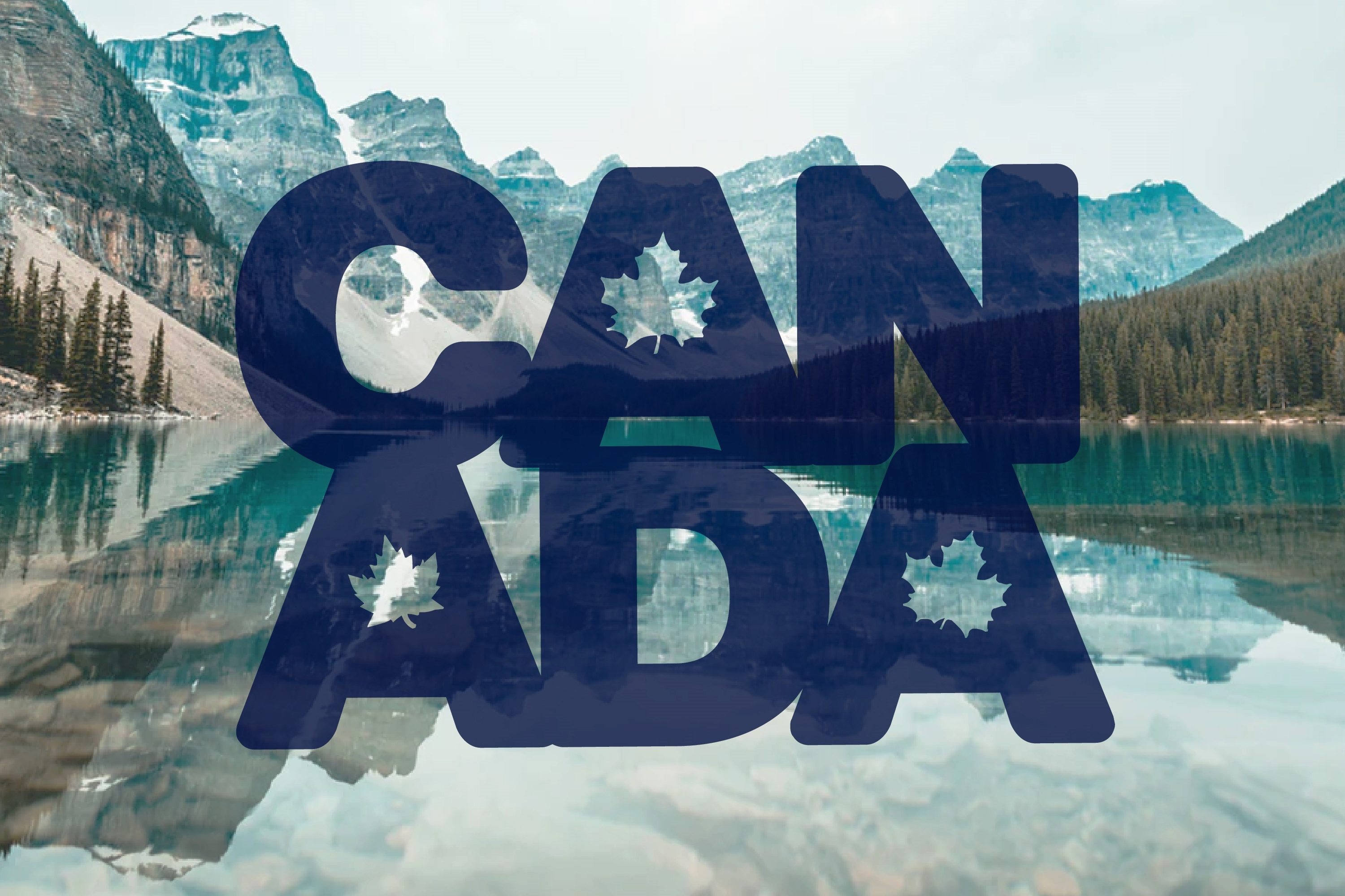212 Canadings Canada Dingbat Solid and Outline Font example image 6