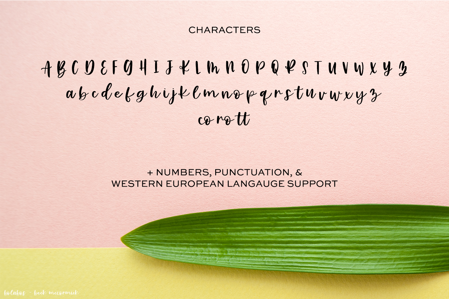 Bolabos Script Font example image 10
