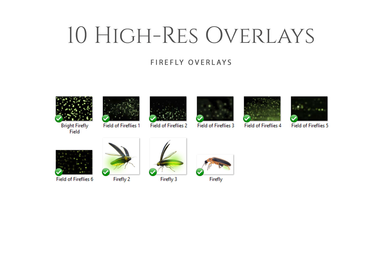 Fantasy Fireflies Photo Overlays example image 2