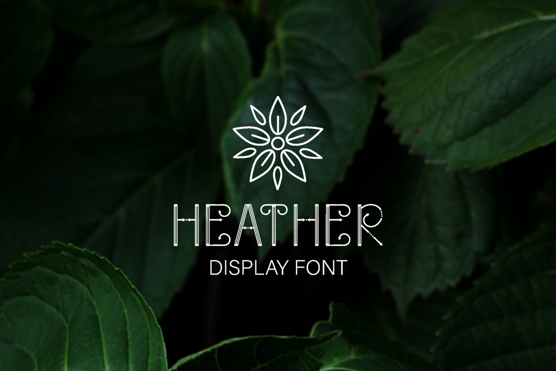 Heather - uppercase font example image 1