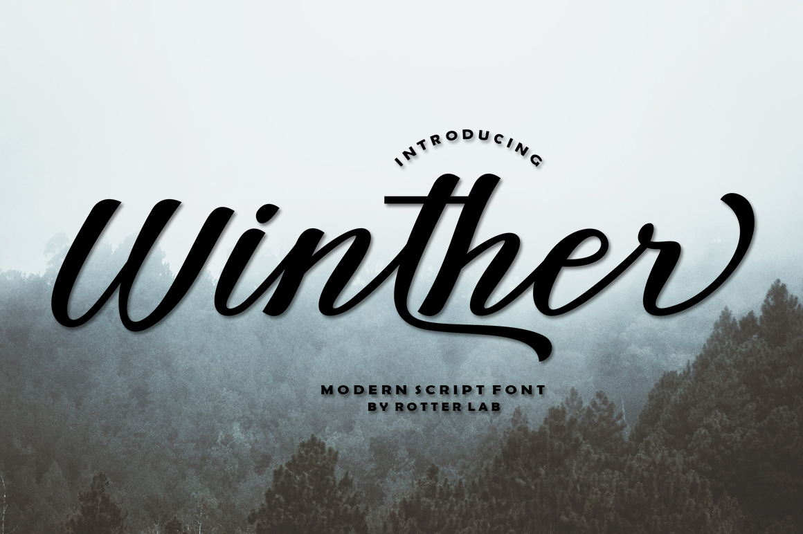 Winther script example image 1