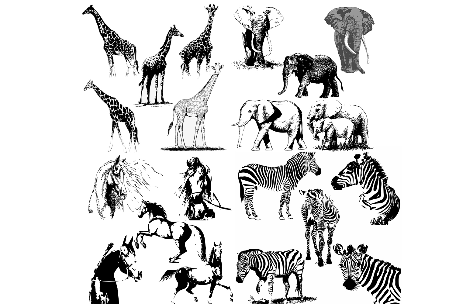 50 wild animals hand drawn silhouette vector illustrations example image 6