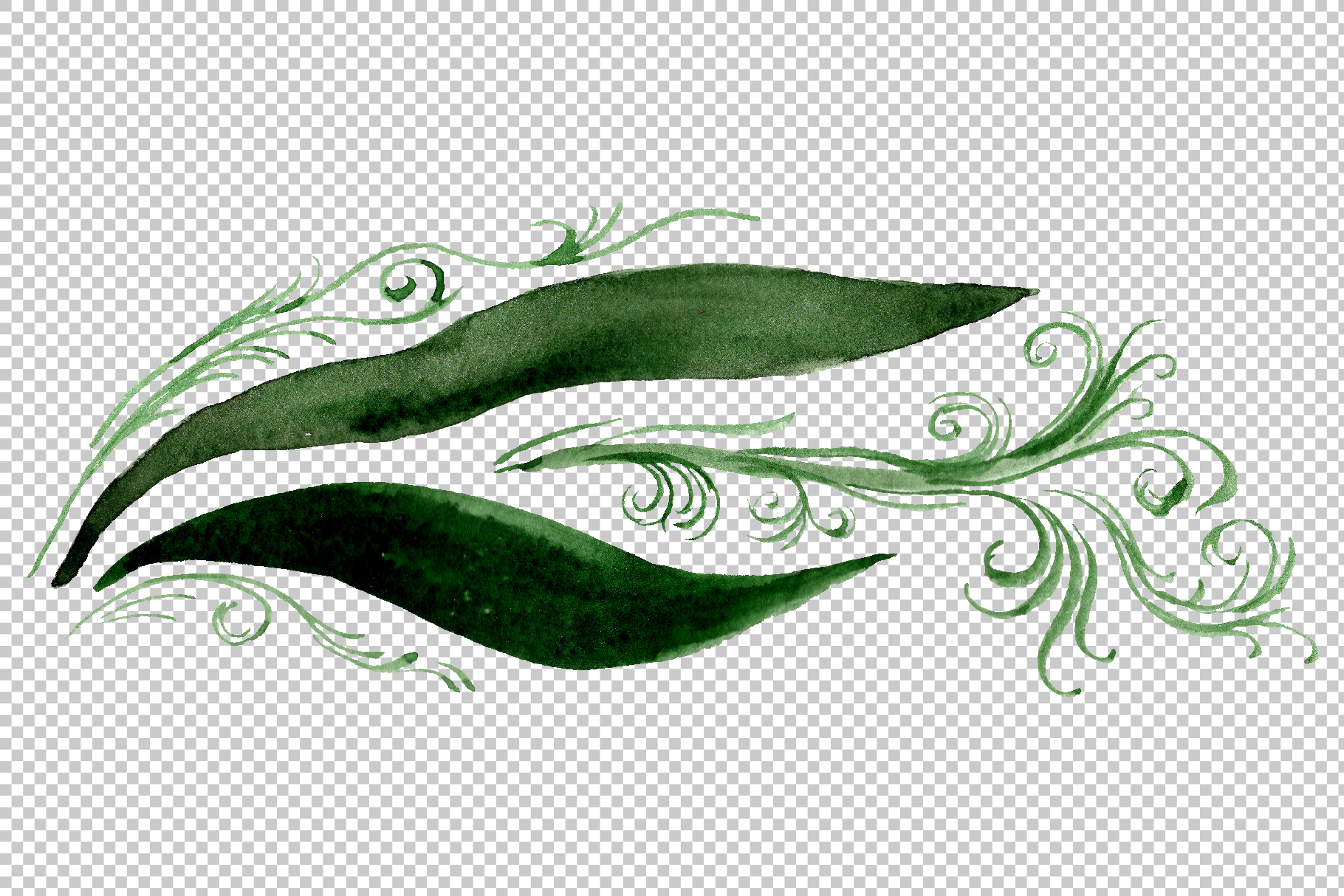 Orchid black Watercolor png example image 12
