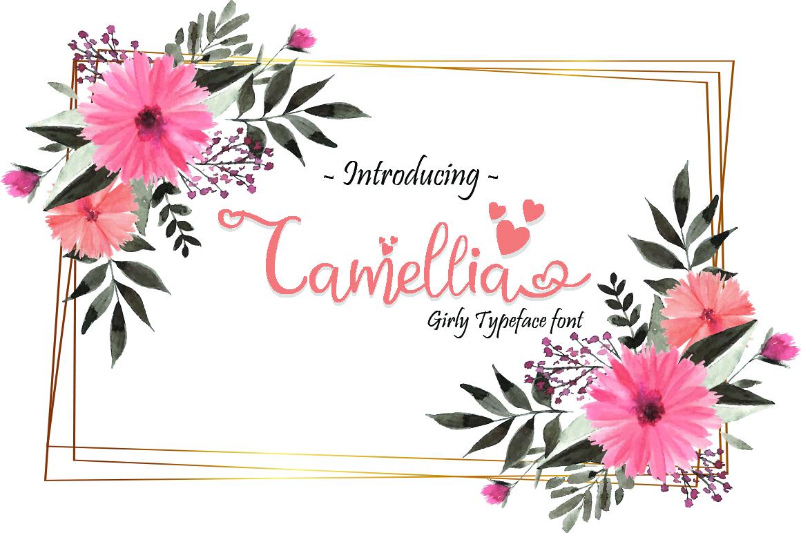 Camellia example image 1