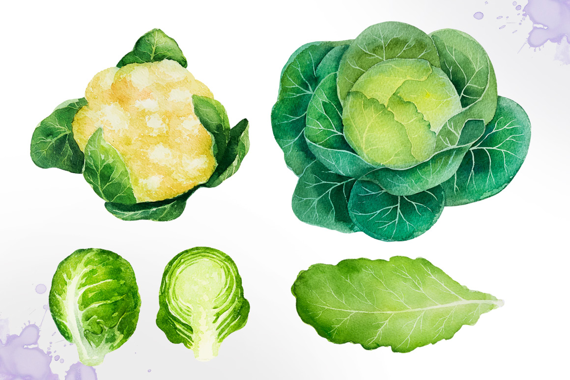 Watercolor vegetables example image 2