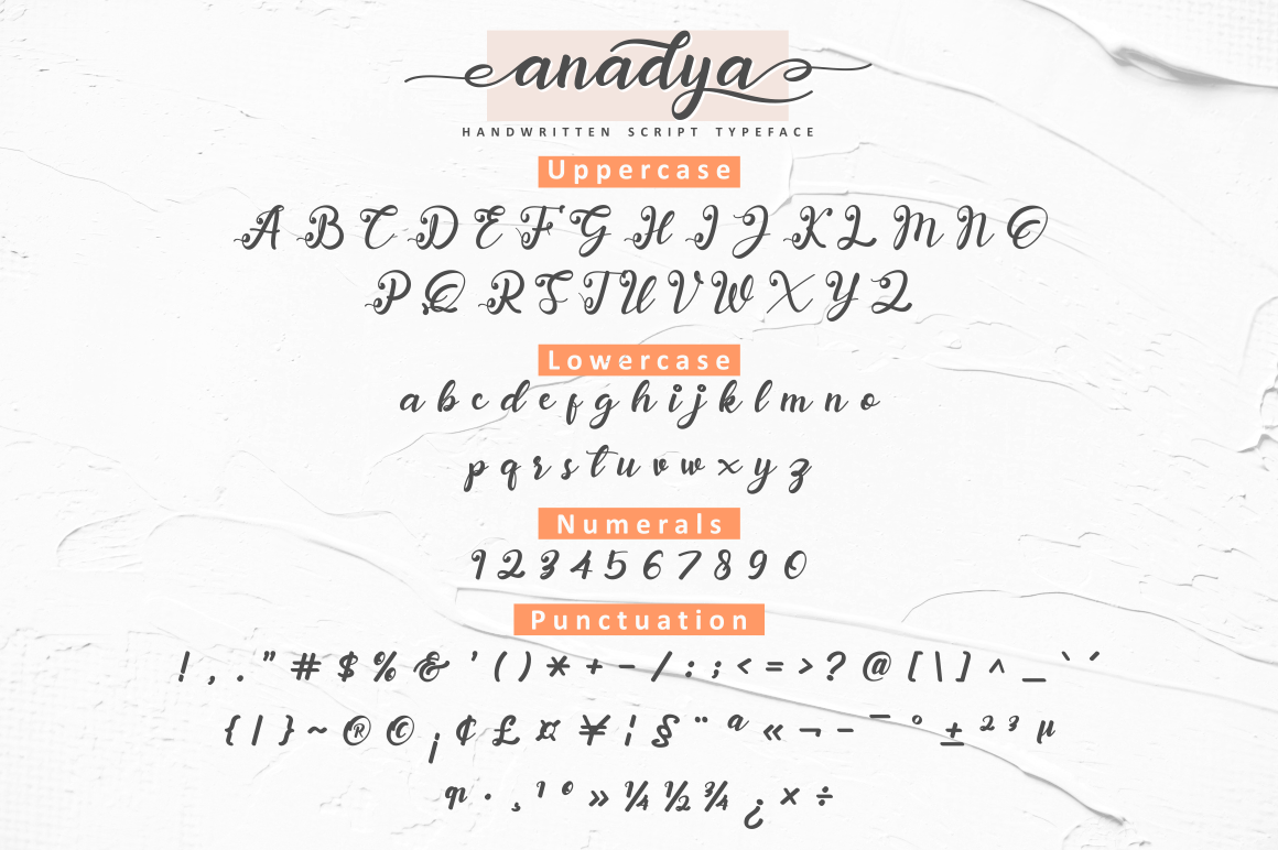 Anadya Handwritten Script example image 9