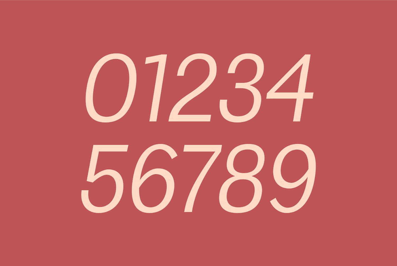 Edingu Sans Serif Font Family example image 13