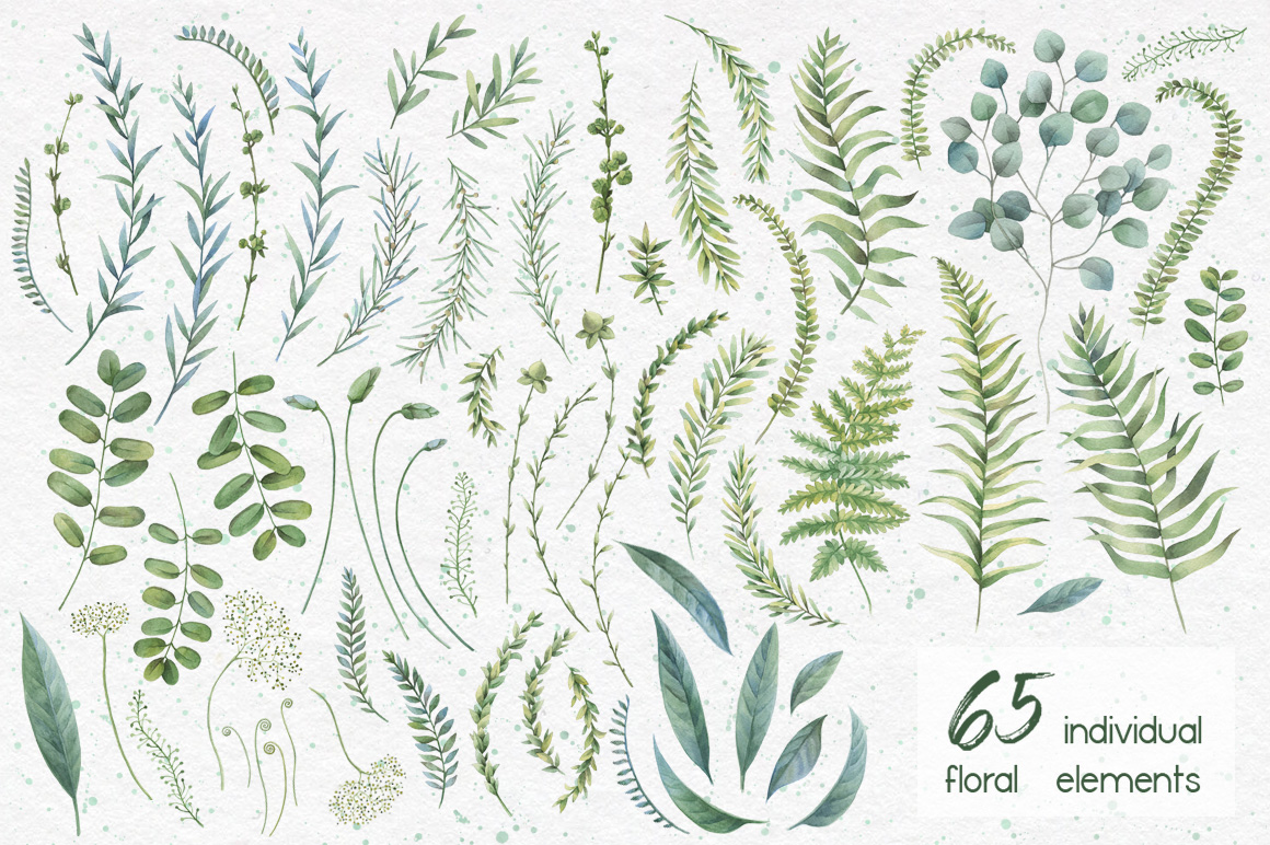 Watercolor herbs. Clipart collection example image 5