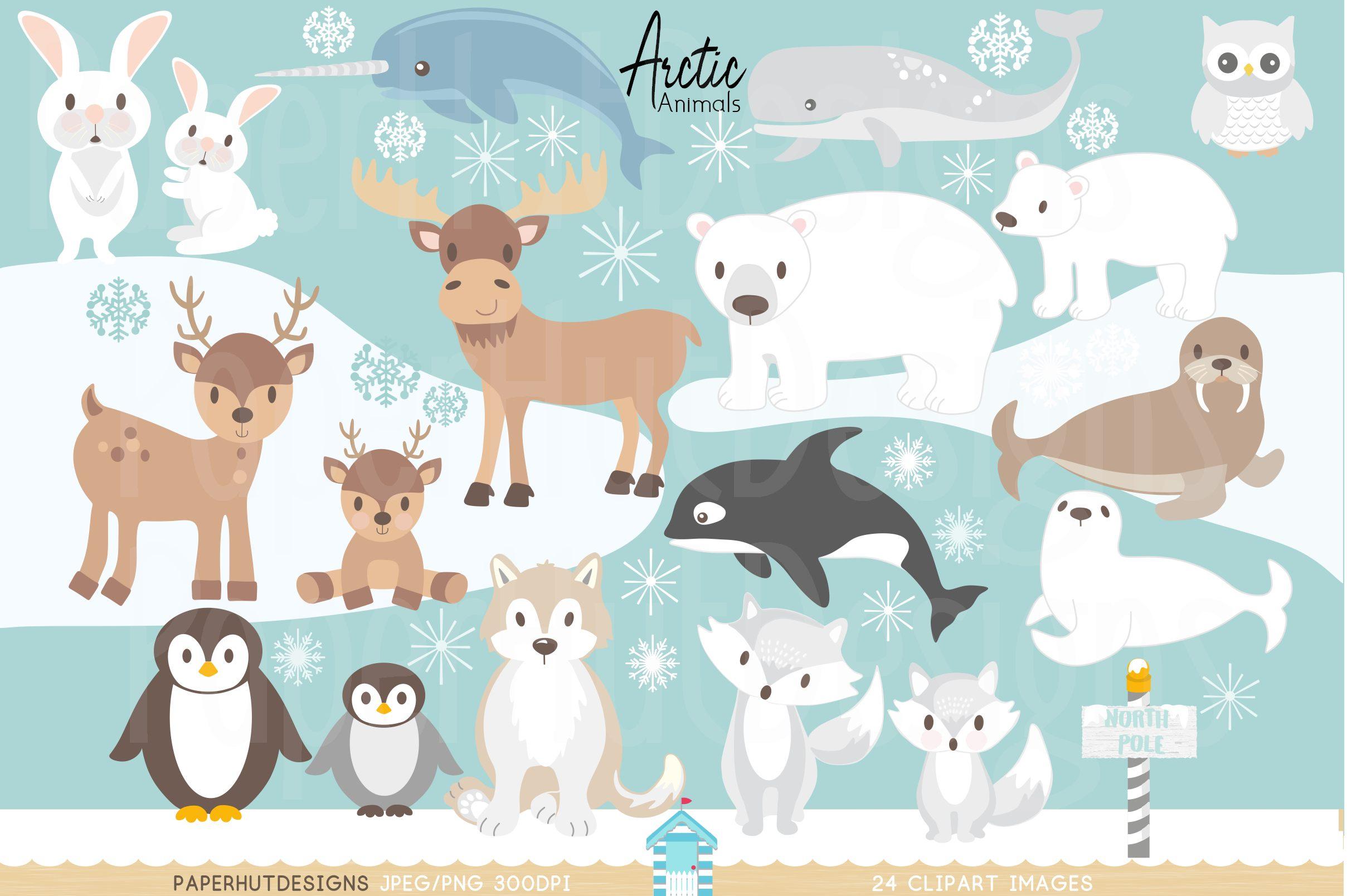 Arctic Animals Clipart (156260) | Characters | Design Bundles