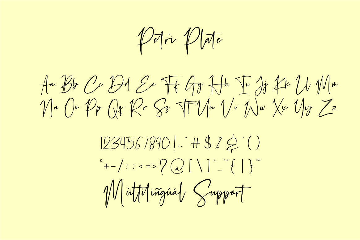 Petri Plate // Handwritten Font example image 8