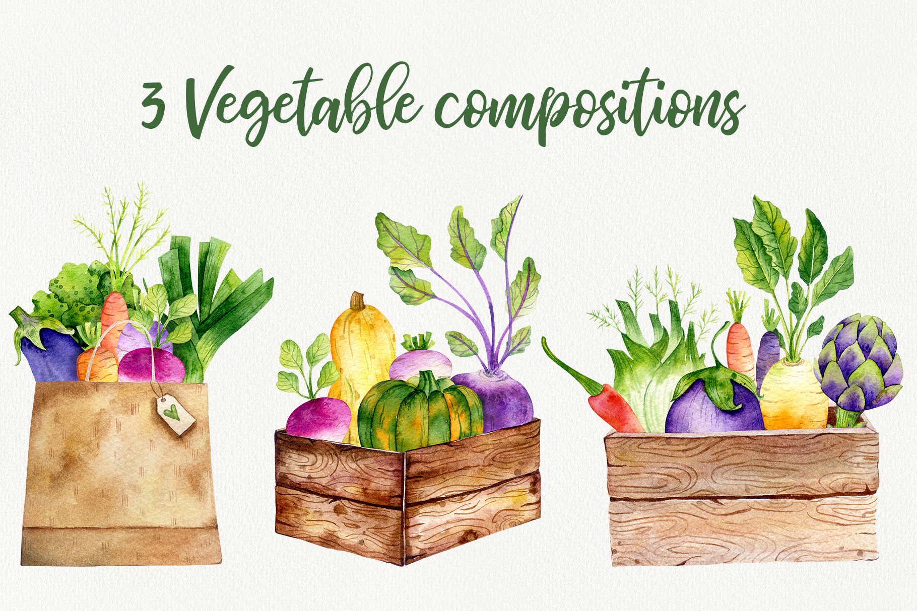Vegetable Time Watercolor Set example image 4