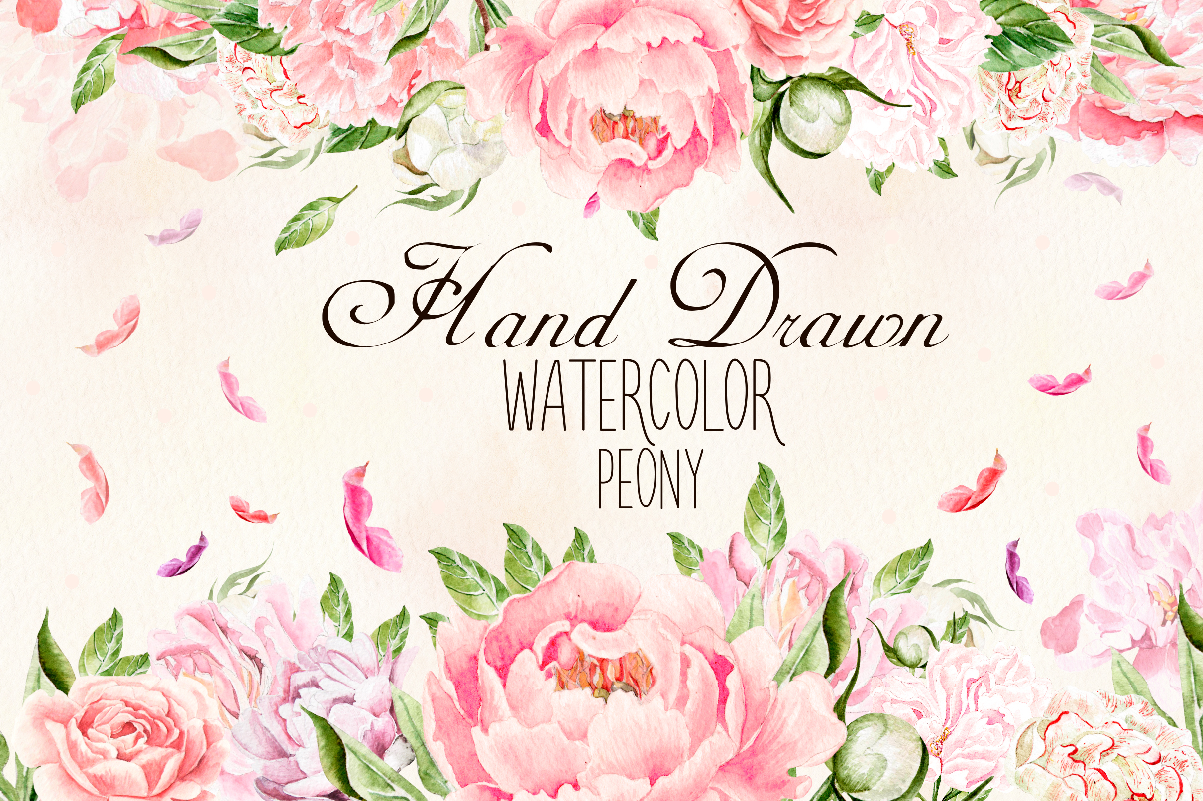 Hand Drawn watercolor Peony example image 1