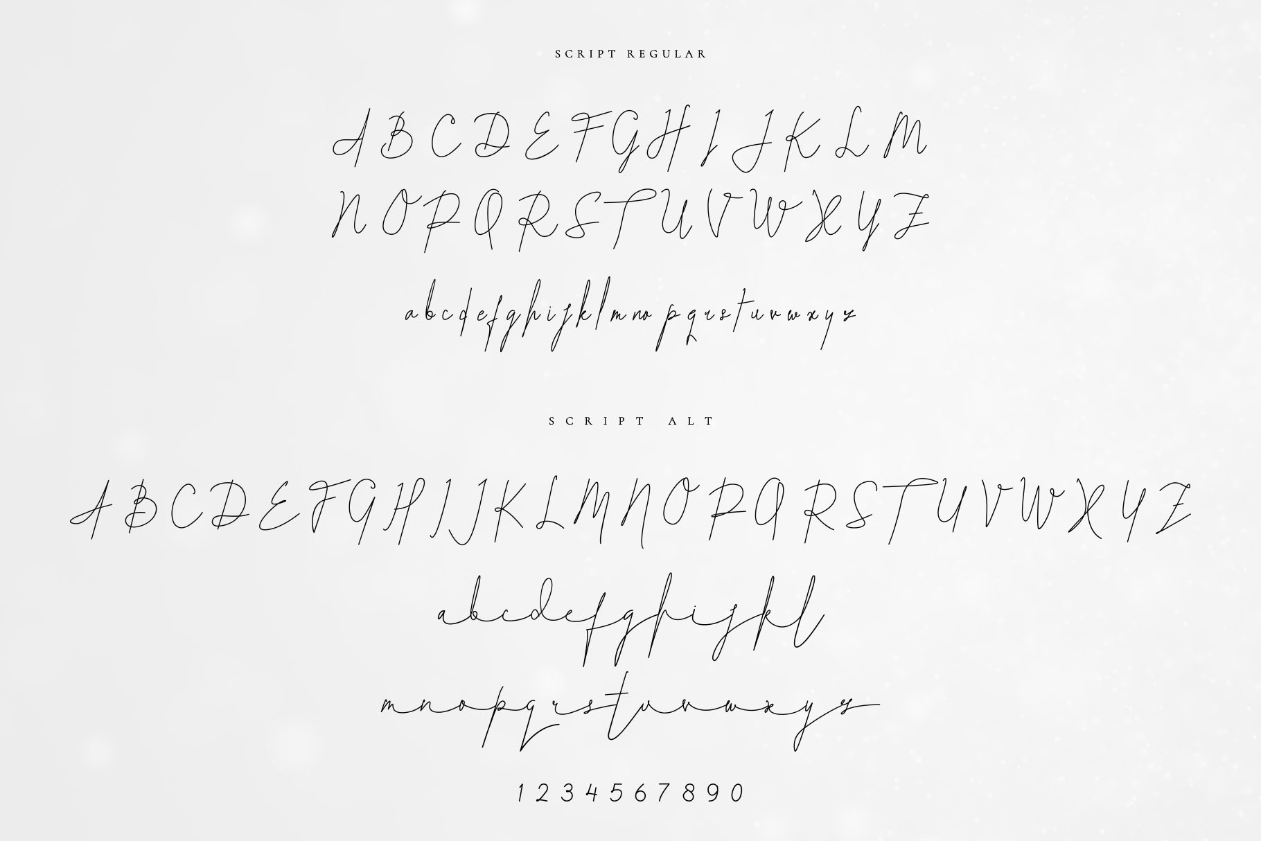 White Palace Script - Font Duo example image 10