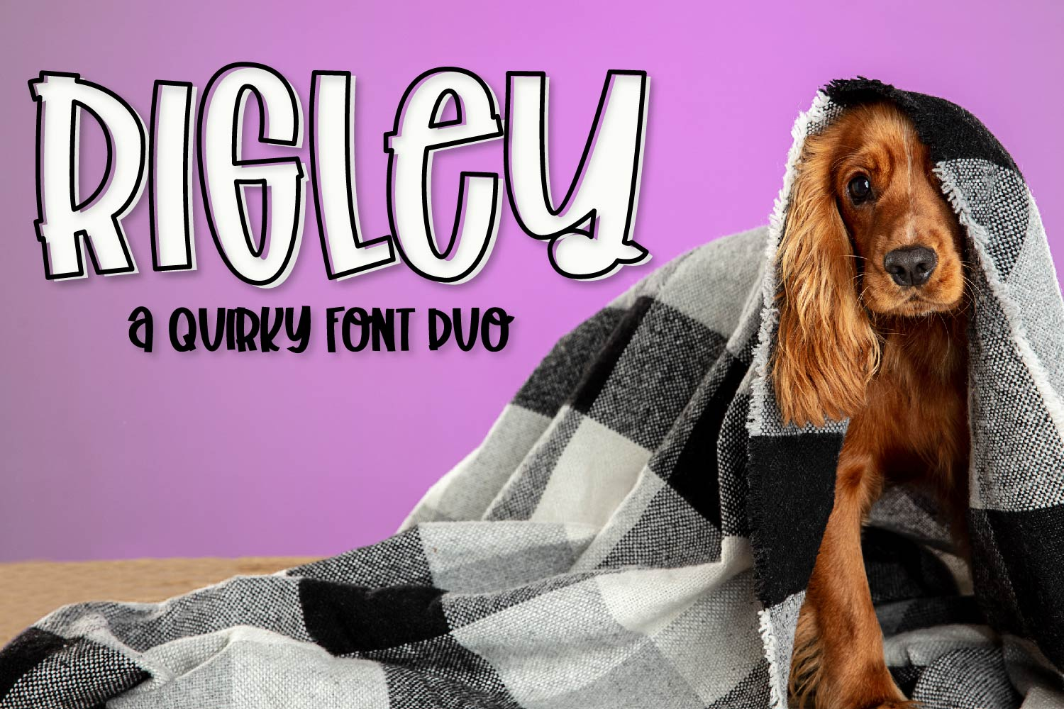 Rigley - A Quirky Font Duo example image 1