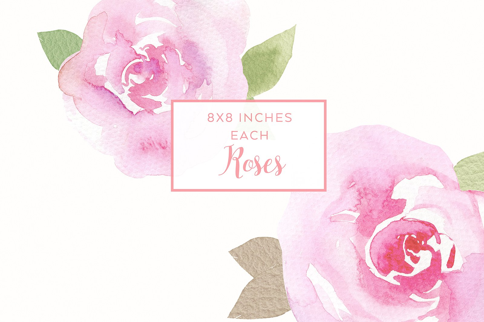 6 watercolor rose illustrations example image 2