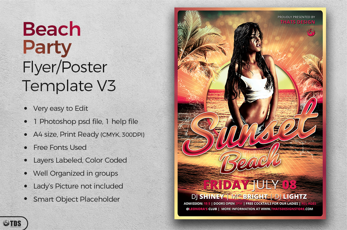 Beach Party Flyer Template V3 example image 2