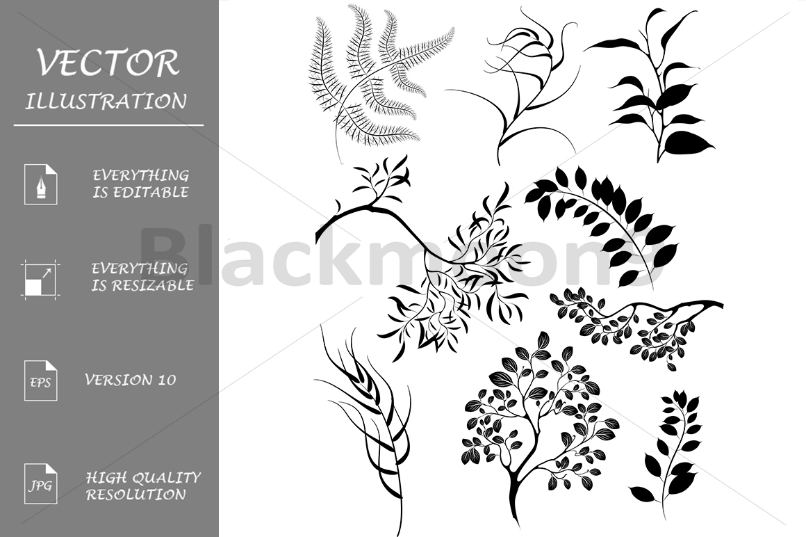 Silhouettes of Branches and Plants example image 1