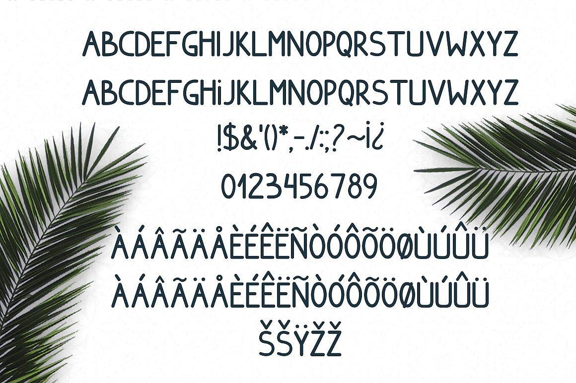 Font Bundle Sale example image 21