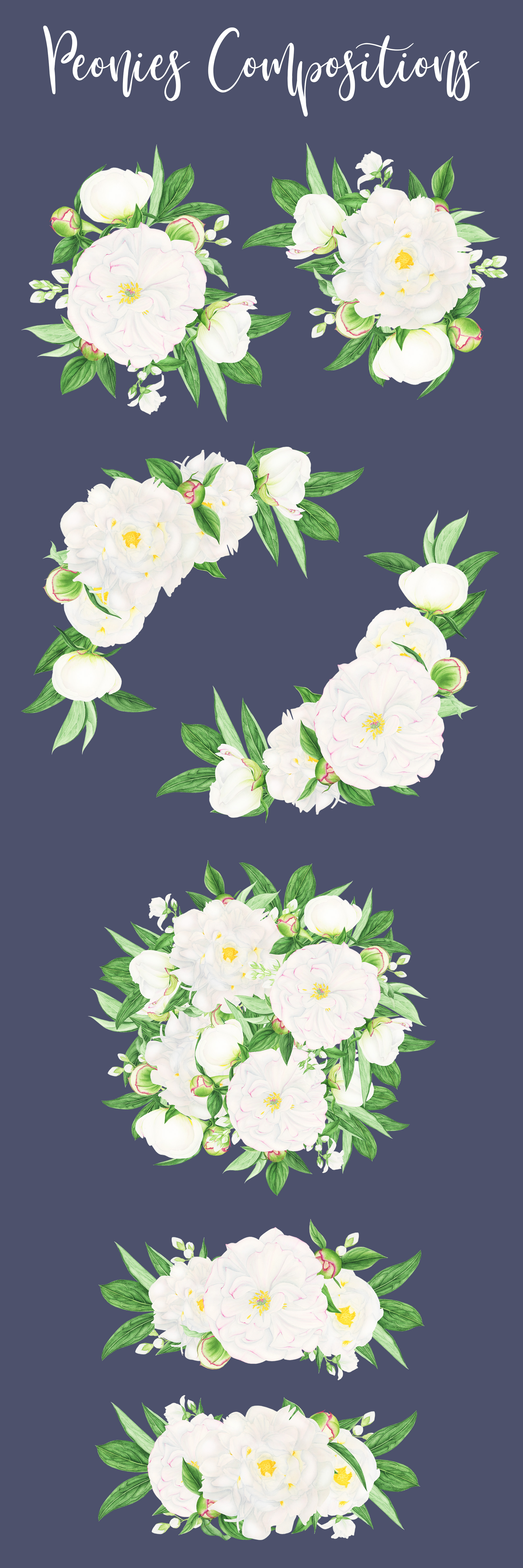 Watercolor Peonies Compositions example image 2