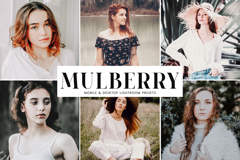 Mulberry Mobile & Desktop Lightroom Presets example image 1
