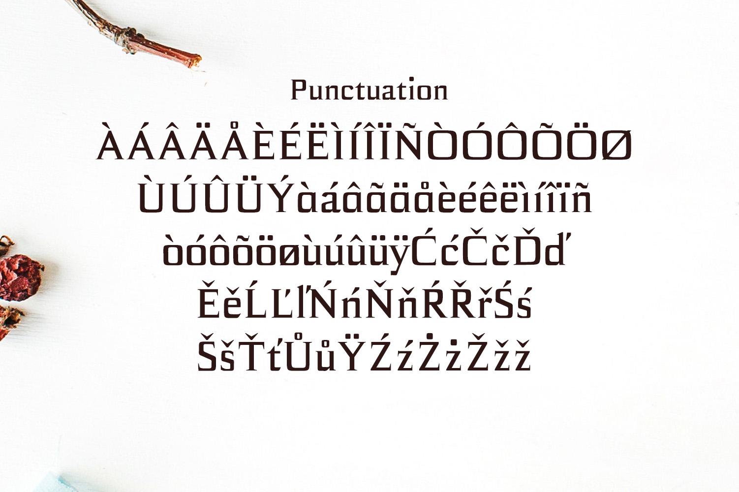 Birtle Serif Font Family example image 4