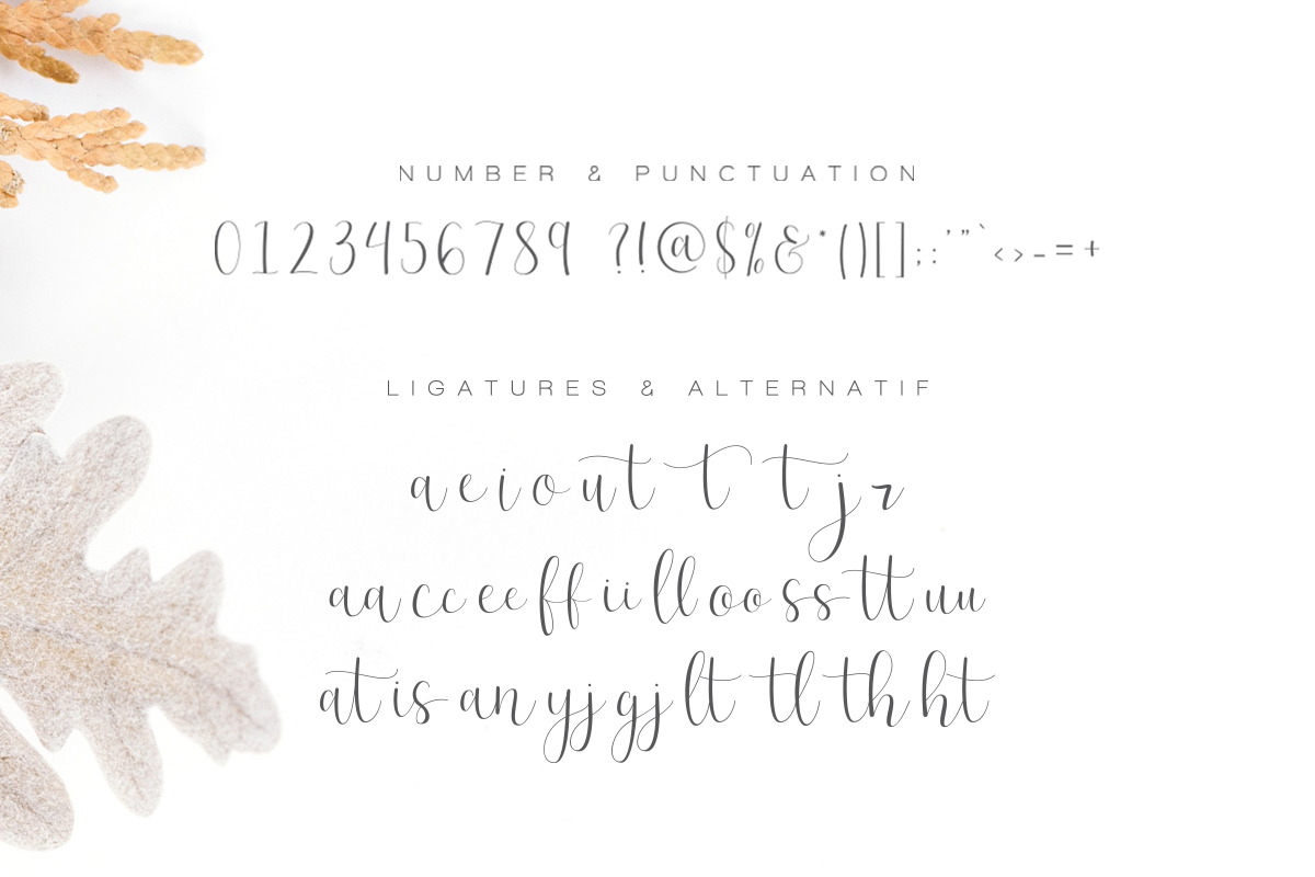 Effort Calligraphy Font example image 12