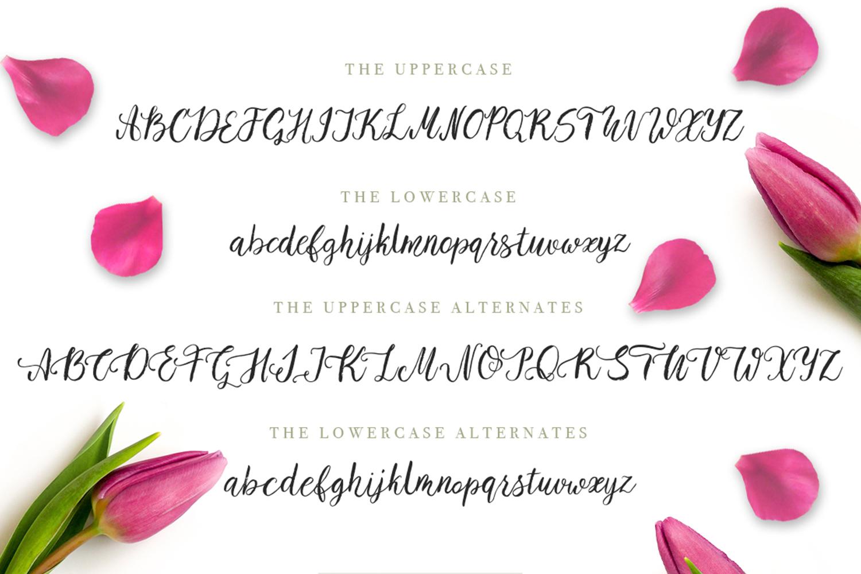 Tulip garden font example image 2