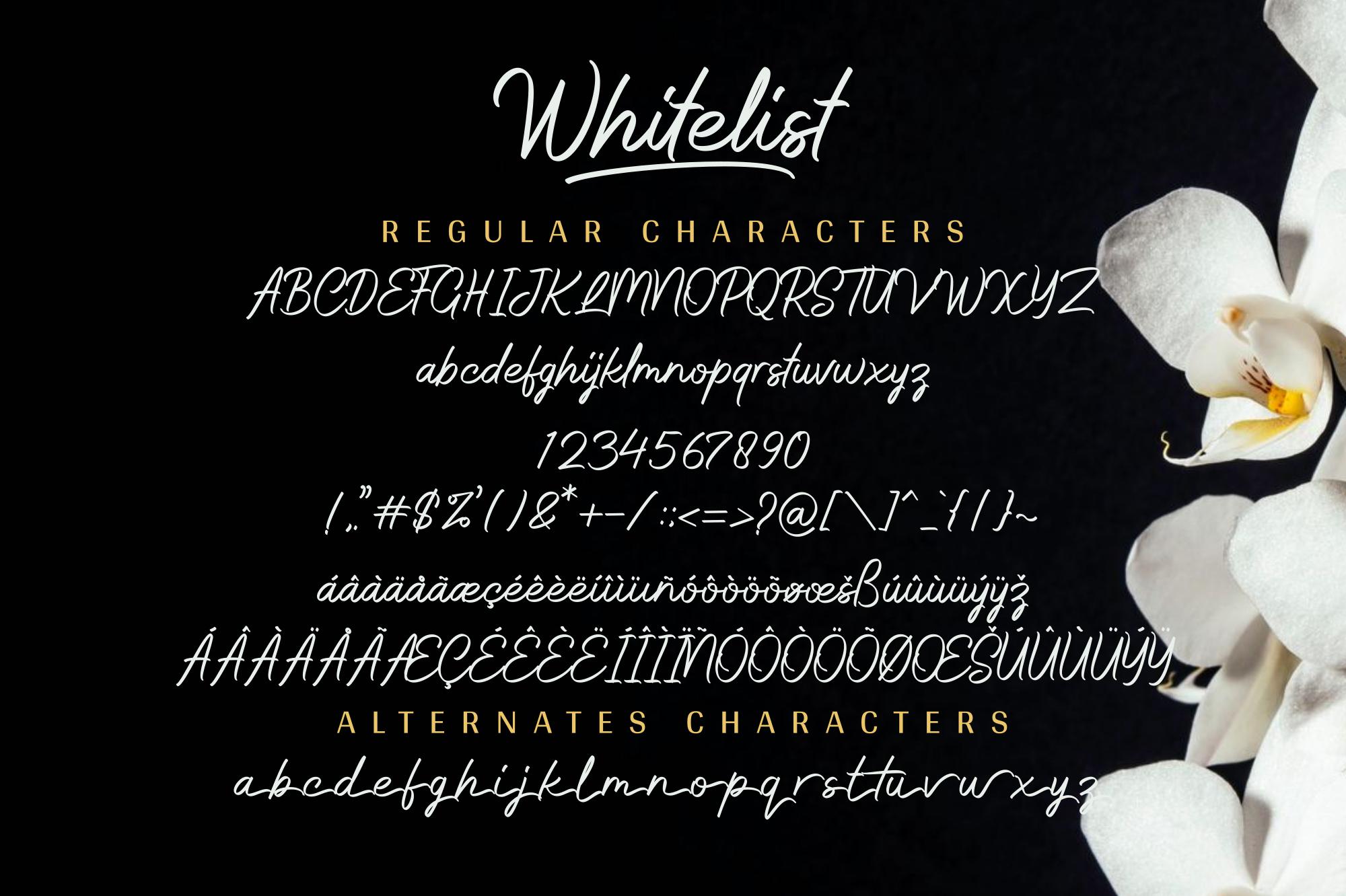 Whitelist example image 12